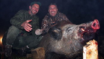 Fine points of wild boar hunting by stalking