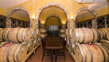 Driven Hunt & Wine